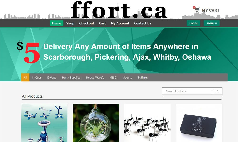 eCommerce Web Development Burlington, Ontario